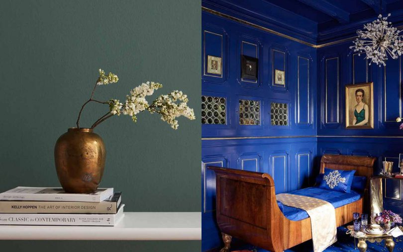 Color and Design Trends